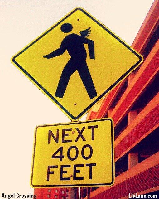 Caution: #Angel Crossing